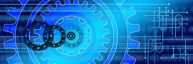 SAP DaaS – Strukturierte Entwicklung individueller Lösungen