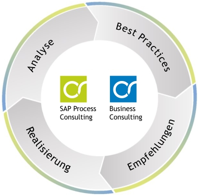 sap process consulting