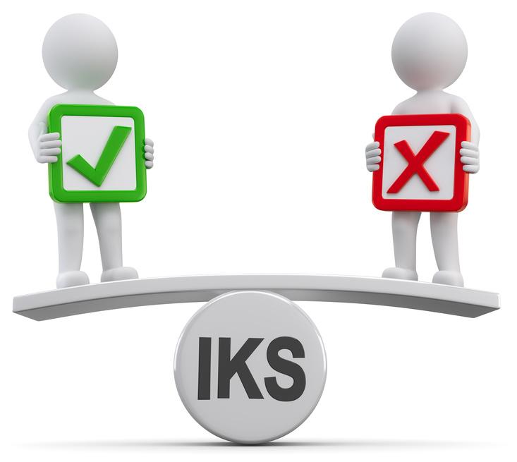 Das Interne Kontrollsystem (IKS) und seine ...